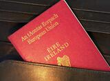 """英国""""脱欧""""公投后爱尔兰护照申请者激增"""