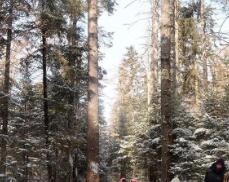 长白山雪景引游客