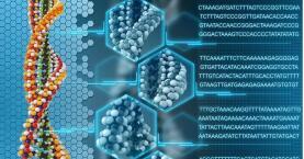 研究人员完成迄今最大规模的中国人基因组测序