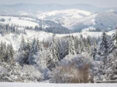 罕见冬季风暴袭击芬兰