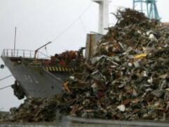 """中国""""洋垃圾""""禁令实施一年,西方的塑料垃圾都去哪儿了?"""